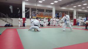 Image karate .355
